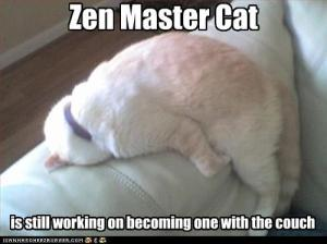 Zen lolcat demonstrates the Art of Sitting