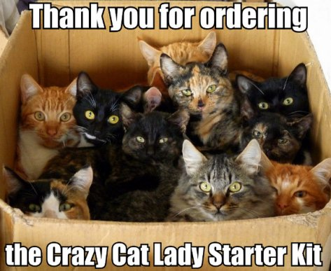 ...you have to know them purrfectly...
