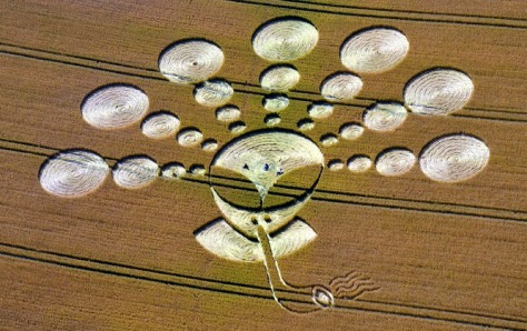 CropCircleJuly27_11Cherhill70a